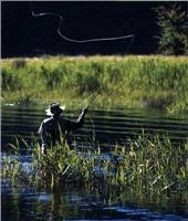 Alpine  trout test anglers. Courtesy Alpine Region Tourism