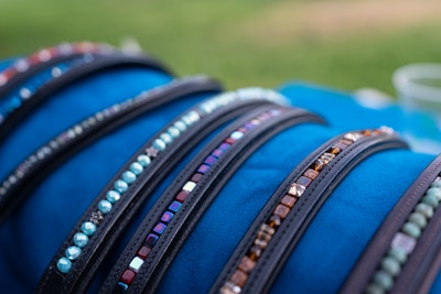 browbands2-jpg