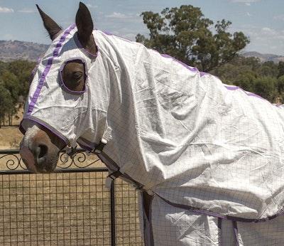 Capriole Equestrian Purple & Lime Green Summer Hood