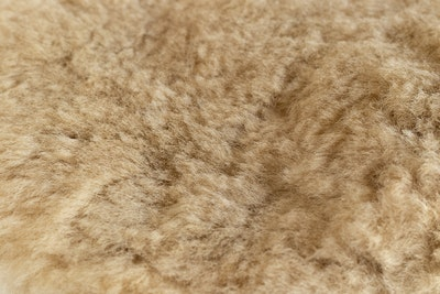 Hairy Pony Merino Wool Polishing Mitt