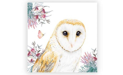 "Print: ""Jarrah"" the Australian Barn Owl"