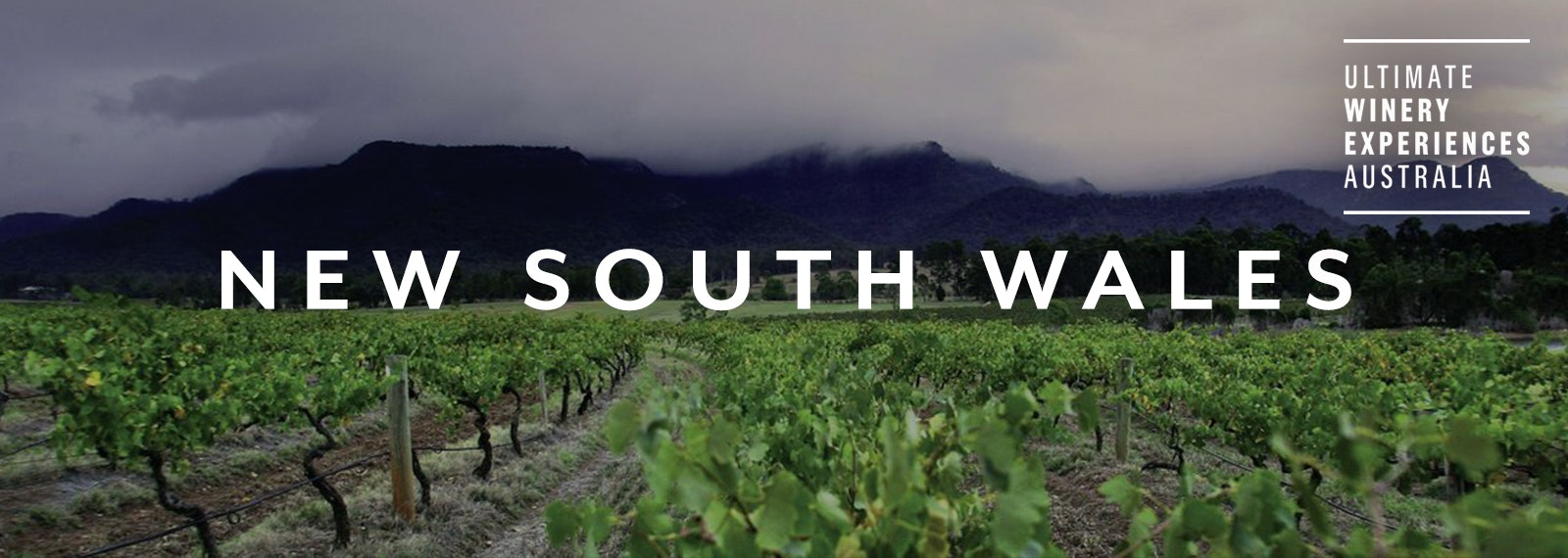 Ultimate Winery Experiences Australia - New South Wales