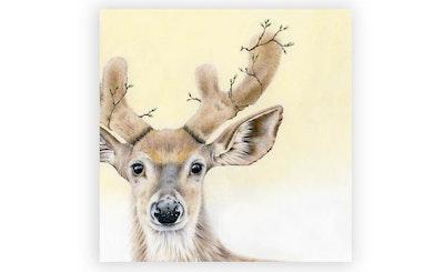 Print: Deer