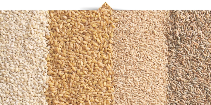 grains-jpg