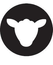 Black Sheep Cycling