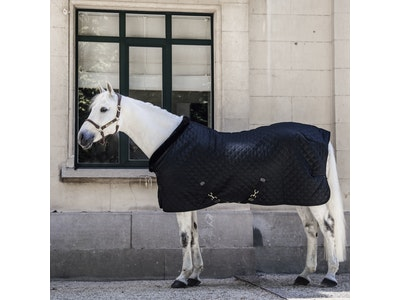 Kentucky Show Rug -160g Limited Edition