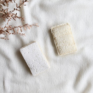 Ekoroo 2pk Eco Dishwashing Sponge Set