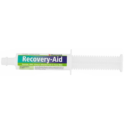 Ranvet Recovery Drench Horses Vitamin Training Aid Paste 80ml