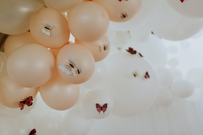 butterfly-birthday-party-ideas-lenzo22-jpg