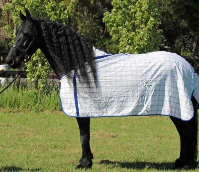 Capriole Equestrian Deluxe Royal Blue Summer Rug