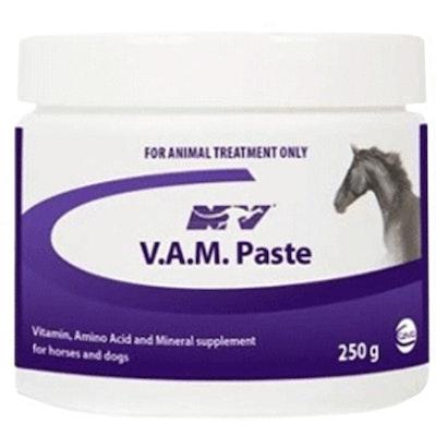 CEVA V.A.M. Vitamin Mineral Supplement Horse Dog Paste 250g