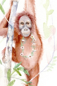 Maggie the Orangutan Fine Art Print