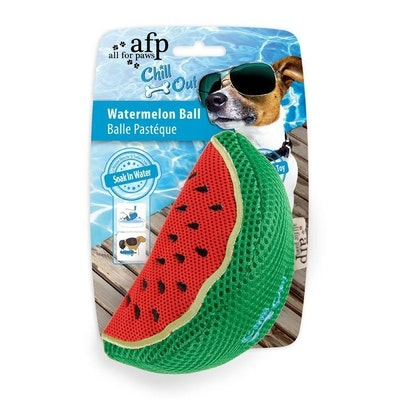 All For Paws Chill Out Watermelon Ball