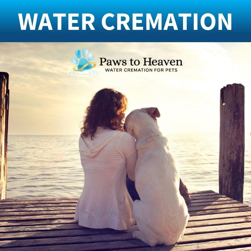 pet water cremation services brisbane