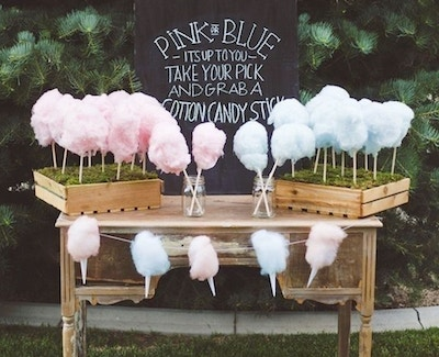 GENDER REVEAL PARTY FUN