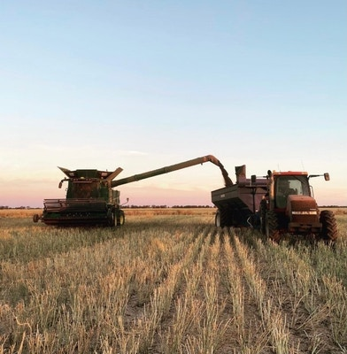 Harvest Mentality