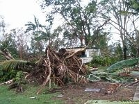 After Cyclone Larry, Qld is open for business says Minister