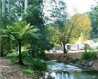 Marysville Caravan and Holiday Park is on the Steavenson River