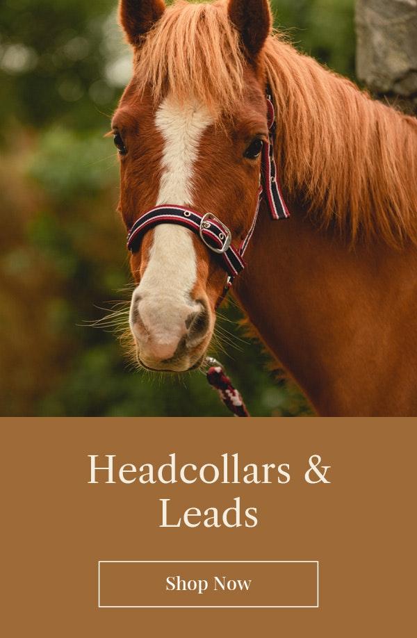 Headcollars & Leads