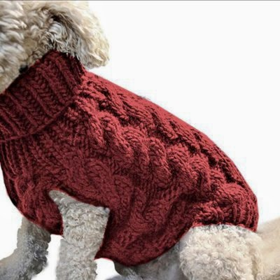 Indi Knitted Sweater Ruby Red   | Daniel's Pet Emporium