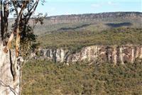 Tag Along Tour team roll through Qld to Takarakka and Carnarvon Gorge National Park