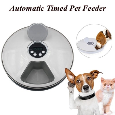 4 Paws Automatic Pet Feeder - 6 Meals
