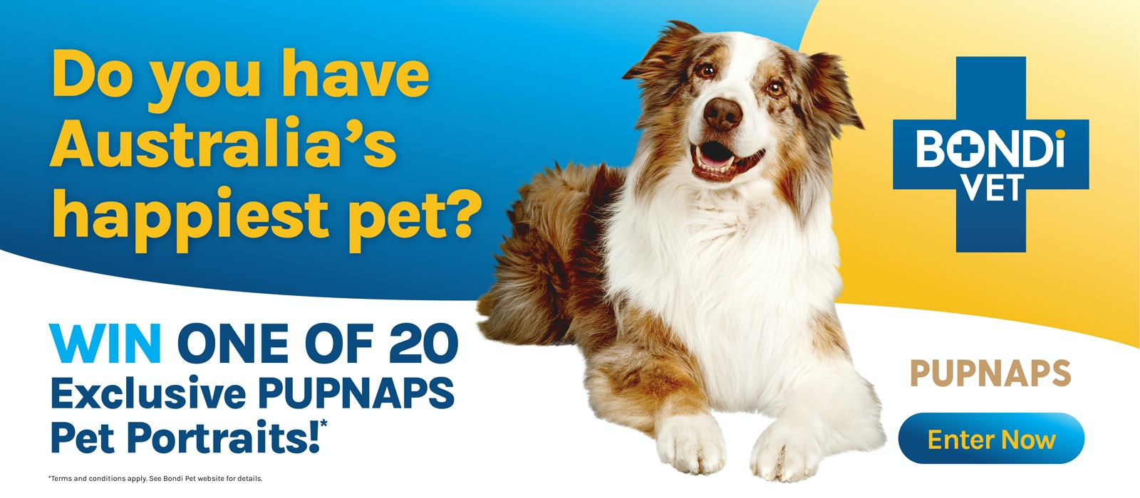 Bondi Vet Happy Pet competition Australia