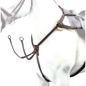 Equipe 5 point Breast Plate BP12