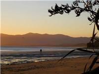 Brews, views and barbecues - Golden Bay Holiday Park