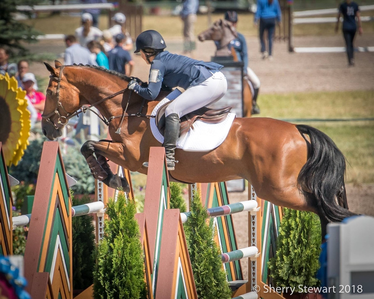 Delaney Vaden: Pasture Disaster Turned Sport Horse