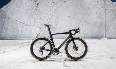 Specialized Bikes 2019: Unsere Highlights der neuen Saison