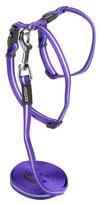 Rogz Alleycat Harness And Lead Set Purple