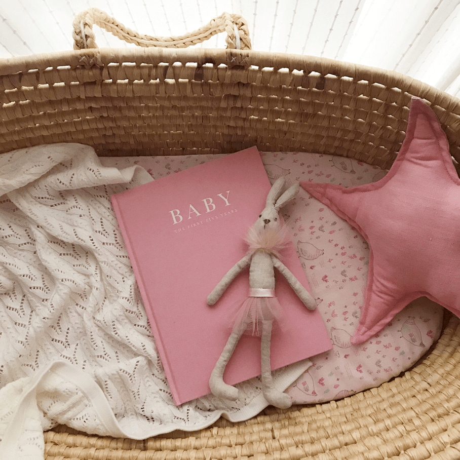 baby_book_pink_2_1400x-png