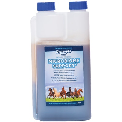 DYNAVYTE Equine Microbiome Support Healthy Gut Horse Supplement - 4 Sizes