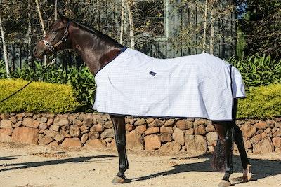 Diamond Deluxe Horsewear Diamond Cotton Ripstop Rug