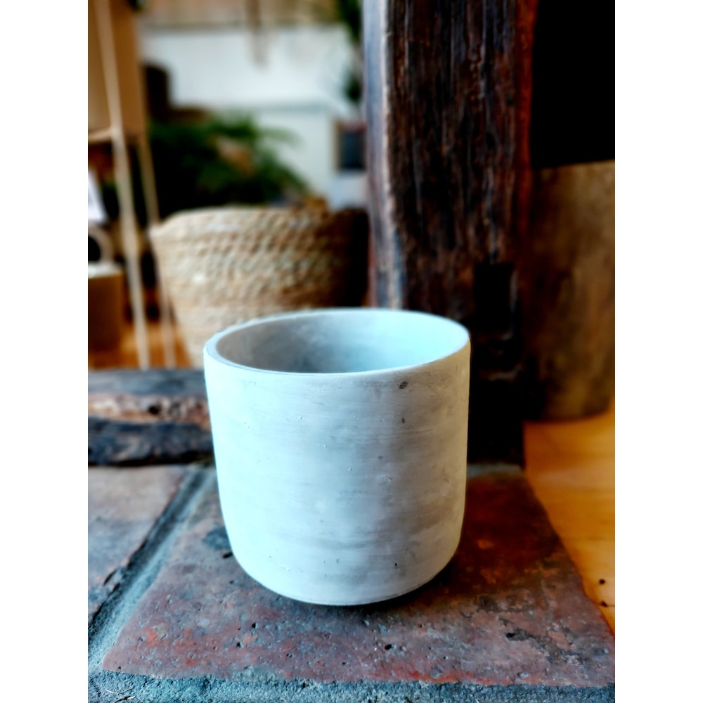 Pretty Cactus Plants  Cement Pot - D18 X H17 - Perfect For Houseplant In 16cm Or Smaller