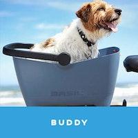 buddy-jpg