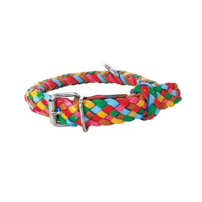 Georgie Paws Tonto Collar - Lollypop