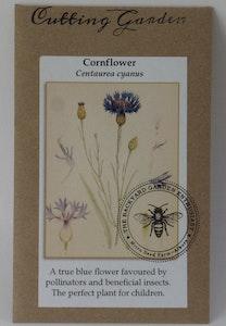 Backyard Garden Enthusiast Cornflower, Centaurea cyanus