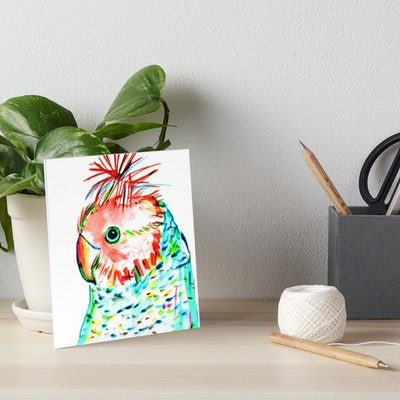 Iconic Colours  Art board Print Small Size- Outstanding Gang Gang Cockatoo