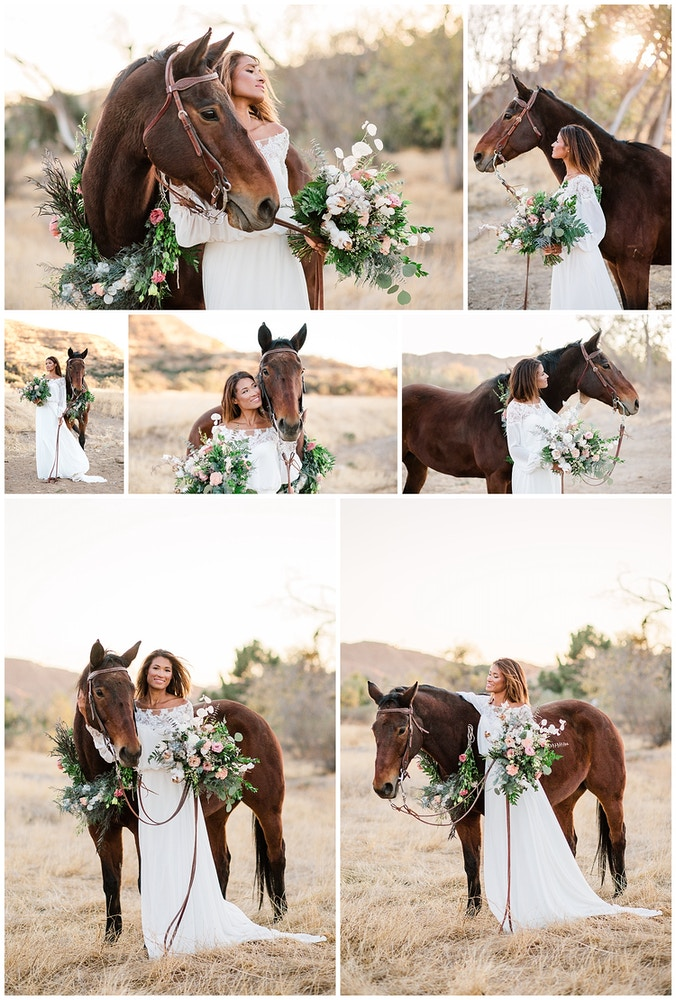 Sara Shier Photography: 5 Tips For Bridal Portraits With Your Horse