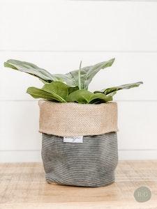 Pot Plant Cover - Cruze Slate Corduroy and Hessian Reversible