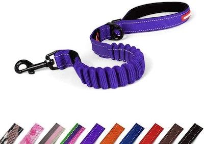Ezydog Leash Zero Shock 25 Purple