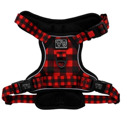 Big & Little Dogs Plaid To The Bone All Rounder Harness