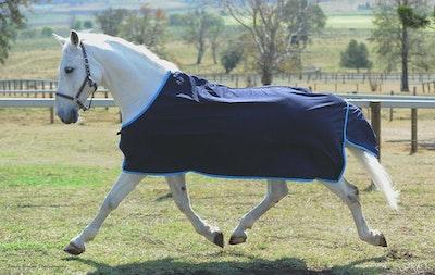 Capriole Equestrian Cotton Show Rug - Aqua Trim
