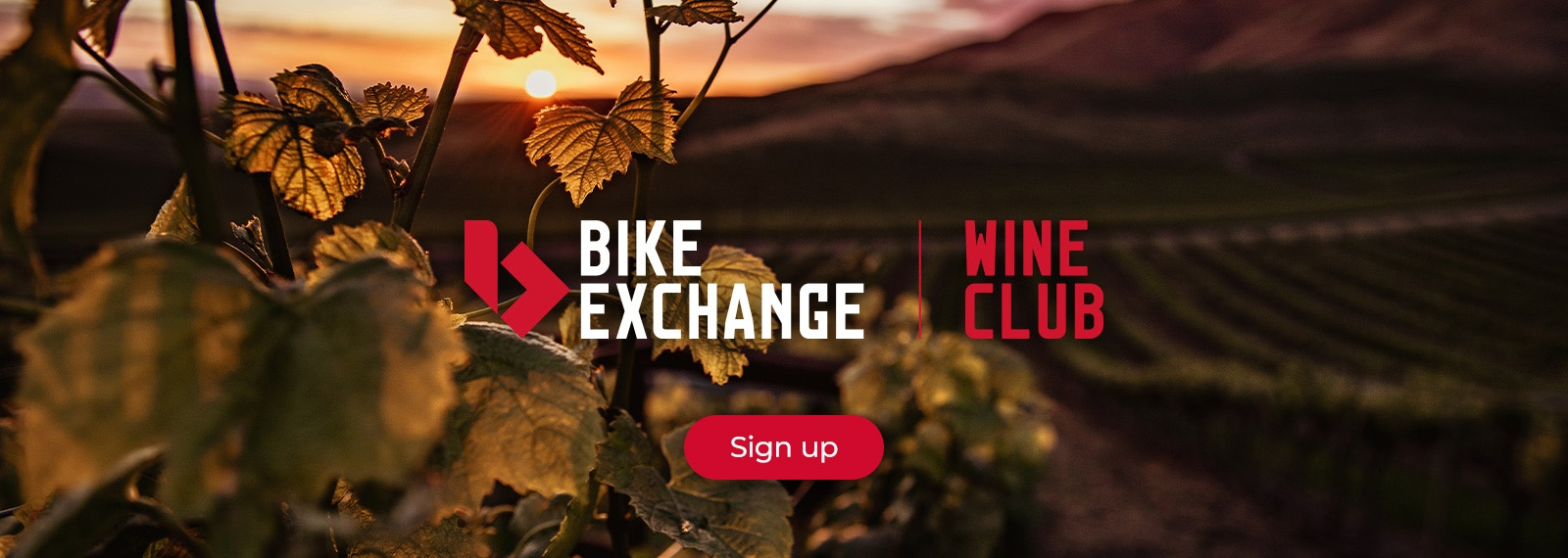 BikeExchange Wine Club