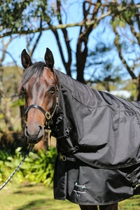 Diamond Deluxe Horsewear Deluxe Top/Rain Sheets