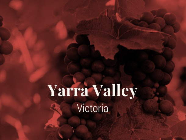 Yarra Valley VIC Wine Region