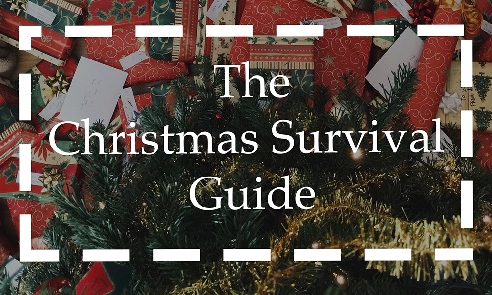 The Christmas Survival Guide