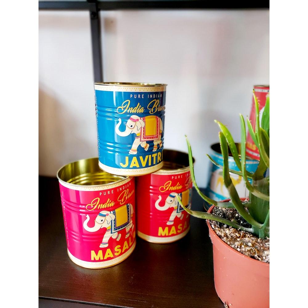 Pretty Cactus Plants  Blue Elephant Tin Planter - 10 X 11cm